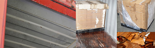 Container Rain Damage