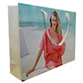 Gloss Laminated Full Colour Print Paper Bag with Flat Satin Handle